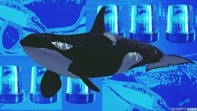 Balinalar 2 aydır bu altcoin'i biriktiriyor