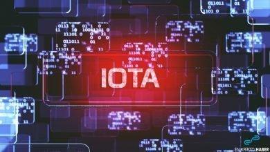 IBCS başkanı: IOTA'nın benimsenmesi 5 yıl sürecek
