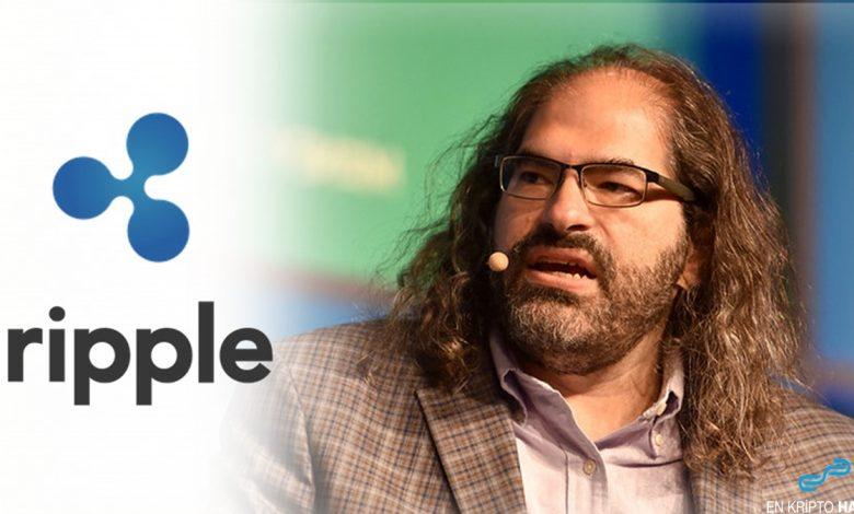 Ripple CTO'su David Schwartz, hangi kripto paralara sahip?