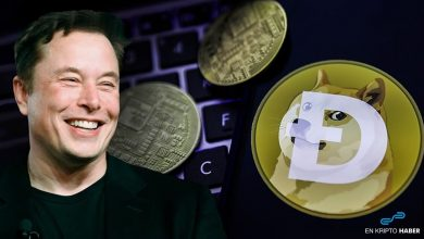 Elon Musk'ın yeni twitinde ne gizli?